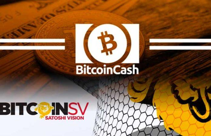 Bitcoin SV (BSV) – What you Need to Know - Cryptalker